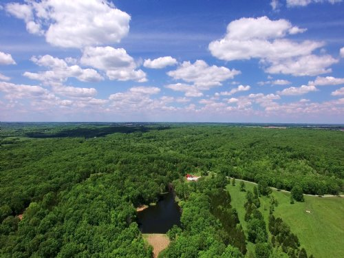 80 Acres - County Rd 138 : Williamsburg : Callaway County : Missouri