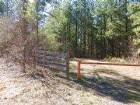 Ford Farm Tract 9664 : Resaca : Murray County : Georgia