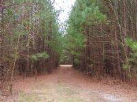 Mill Creek Tract 9719 : La Fayette : Walker County : Georgia