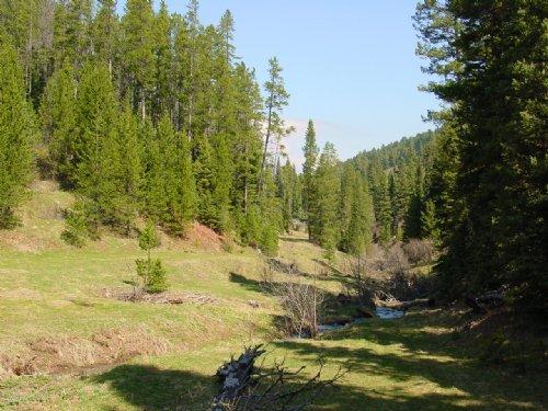 Goose Creek : Bozeman : Gallatin County : Montana