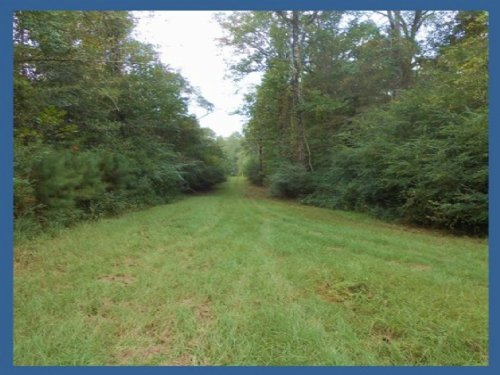 22.78 Acres In Pike County : Summit : Pike County : Mississippi