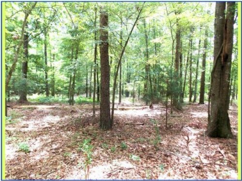 2.45 Acres In Hinds County : Raymond : Hinds County : Mississippi