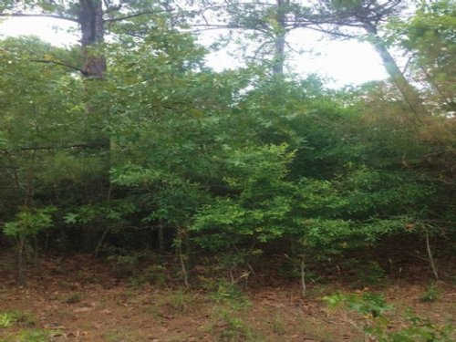 1.53 Acres In Greene County : Leakesville : Greene County : Mississippi
