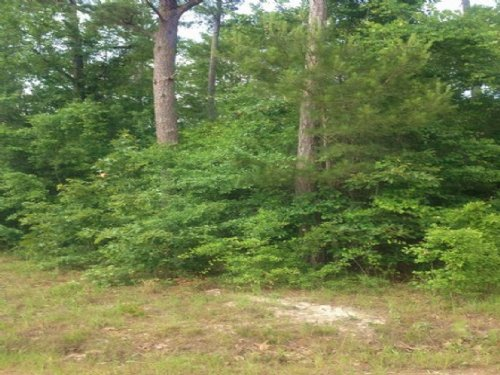 1.02 Acres In Greene County : Leakesville : Greene County : Mississippi