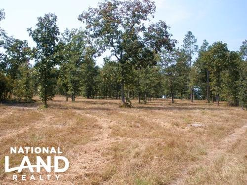 11 Acre Hound Hollow Equestrian Lan : Camden : Kershaw County : South Carolina