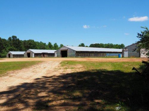 Broiler Farm New Hebron Jefferson D : New Hebron : Jefferson Davis County : Mississippi