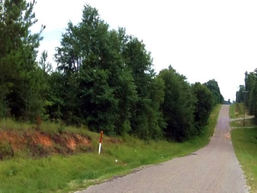 Sprawling Acres : Lucedale : George County : Mississippi