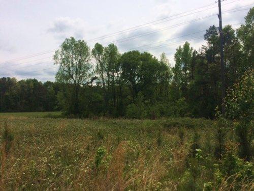 Dunlap Rd : Winterville : Oglethorpe County : Georgia