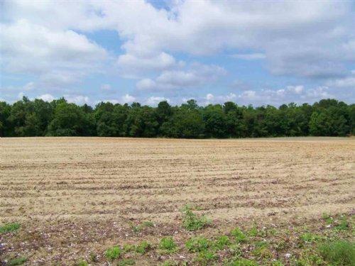 9.97 Acres Of Mixed Farmland : Cochran : Bleckley County : Georgia