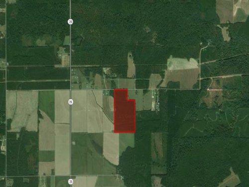 Peaceful Pines-Recreational Dream : Oberlin : Allen Parish : Louisiana