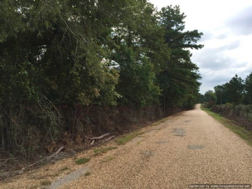 100± Acres : Summit : Pike County : Mississippi