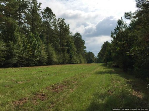 42± Ac In N. Pike School District : Summit : Pike County : Mississippi