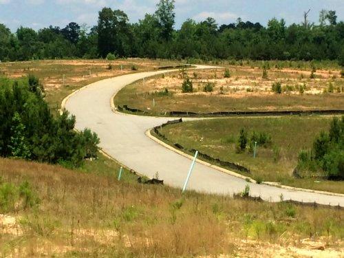 Reduced Pineworth Road : Macon : Bibb County : Georgia