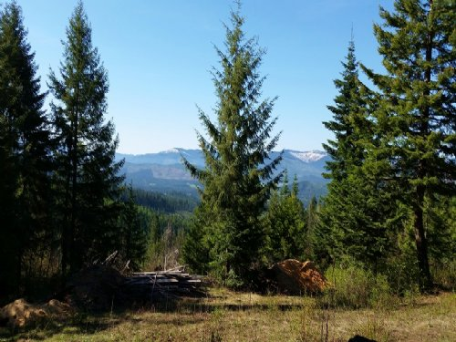 Secluded Off Grid Living. : Santa : Benewah County : Idaho