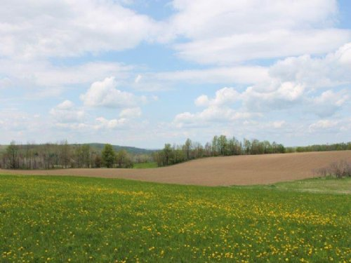 5 Acres Near Cooperstown With Views : Warren : Herkimer County : New York