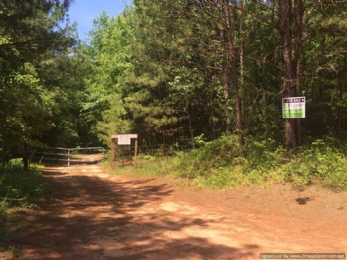 80± Ac Hunting Tract : Conehatta : Newton County : Mississippi