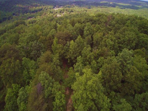126+/- Acres Hunters Paradise : Palmer : Grundy County : Tennessee