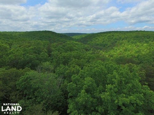 96 Acres Signal Mountain Property : Signal Mountain : Hamilton County : Tennessee