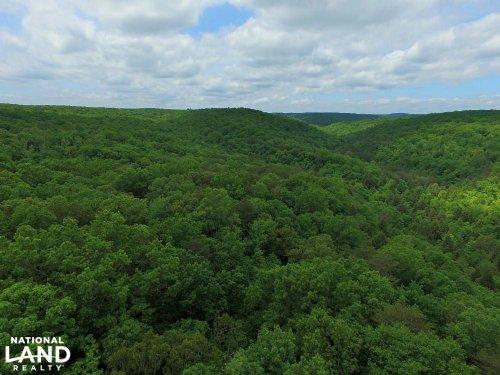127 Acres Signal Mountain Property : Signal Mountain : Hamilton County : Tennessee