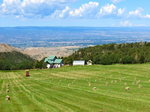 Montrose Ranch : Montrose County : Colorado
