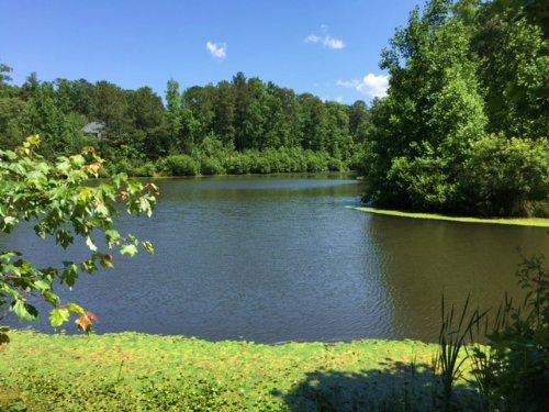 28.61 +/- Ac With Private Lake : Waleska : Cherokee County : Georgia