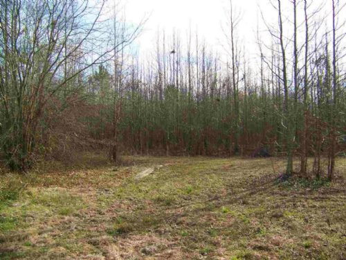 2.25 Acre Residential Lot : Cochran : Bleckley County : Georgia