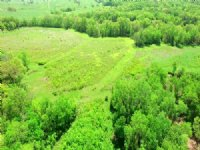 52 Acres County Rd 314 Chariton Co : Keytesville : Chariton County : Missouri