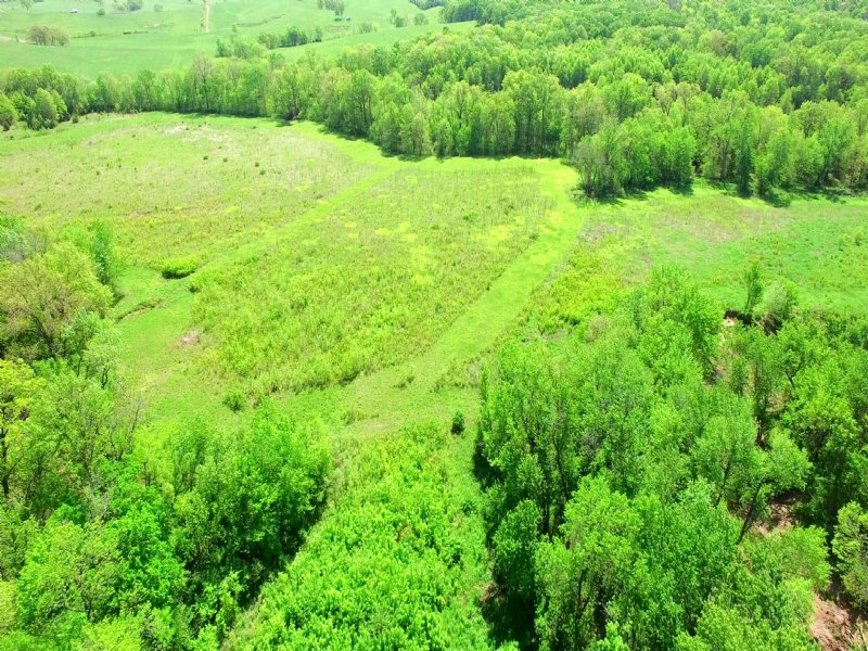 52 Acres County Rd 314 Chariton Co : Keytesville : Chariton County : Missouri