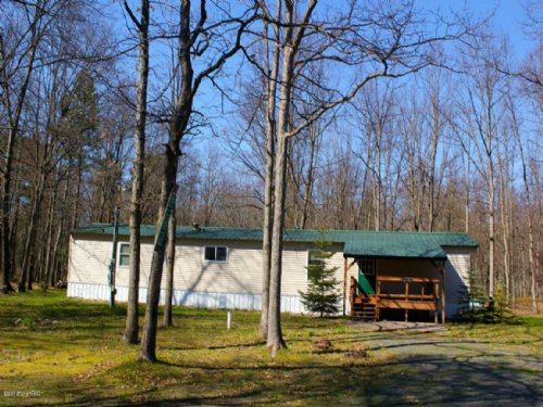 Fully Wooded Hunting Property : Custer : Mason County : Michigan