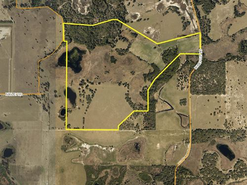 Residential Development Land : Groveland : Lake County : Florida