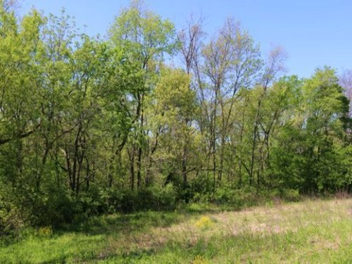Beautiful Mature Wooded Ridge : Brooklyn : Green County : Wisconsin