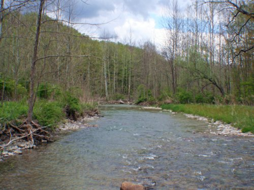 Waterfront Land On Canaseraga Creek : Ossian : Livingston County : New York