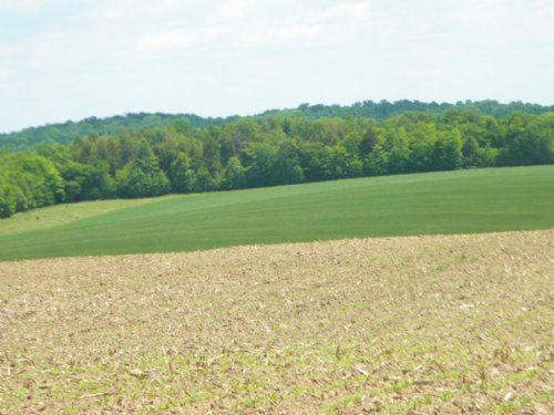 154 Acres Tillable Farmland : Berkshire : Tioga County : New York