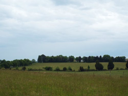 Level Pasture With Mountain Views : Greenback : Blount County : Tennessee