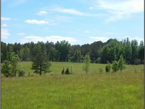 125 Acres In Madison County : Camden : Madison County : Mississippi