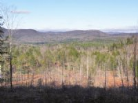 Ragged Mountain Forest : Wilmot : Merrimack County : New Hampshire