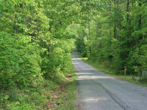 19.89 Acres In Goochland : Columbia : Goochland County : Virginia