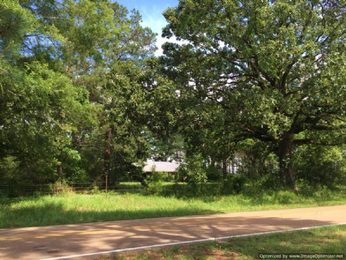 88± Acres : Wesson : Copiah County : Mississippi