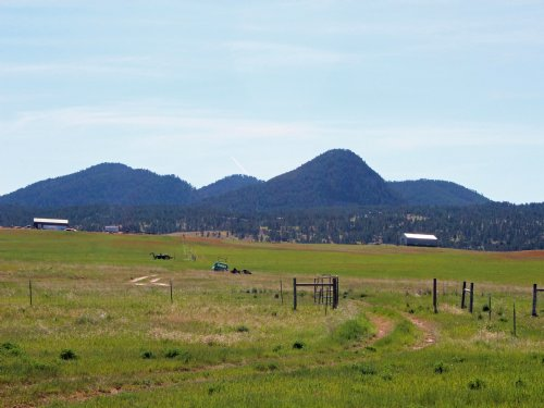 125 Acre Homestead : Sundance : Crook County : Wyoming