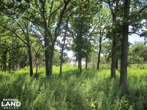 Chautauqua Hunting Land And Cabin : Peru : Chautauqua County : Kansas