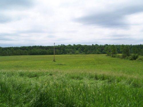 Farmland In Thousand Islands : Clayton : Jefferson County : New York