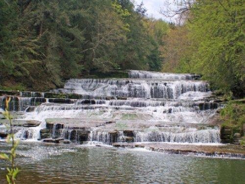 50 Acres Large Waterfall On Creek : Ossian : Livingston County : New York