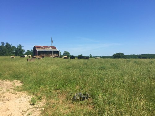 67 Acre Farm With Pond And Well : Willow Springs : Howell County : Missouri