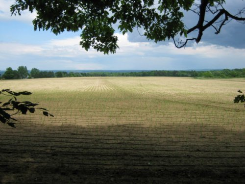 91 Acres Near Village Trumansburg : Ulysses : Tompkins County : New York