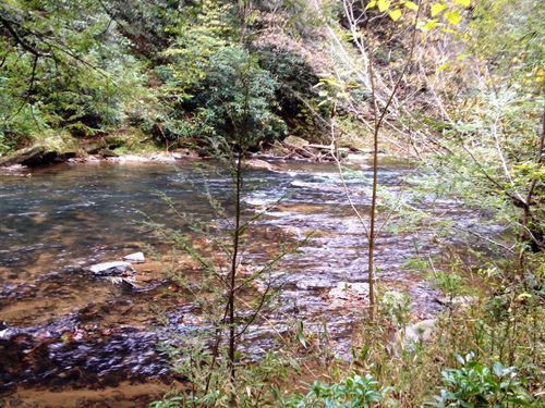 Awesome Trout Stream Property : Ellijay : Gilmer County : Georgia