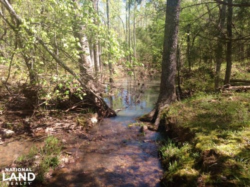 80 Acres Investment Opportunity : Cabot : Lonoke County : Arkansas