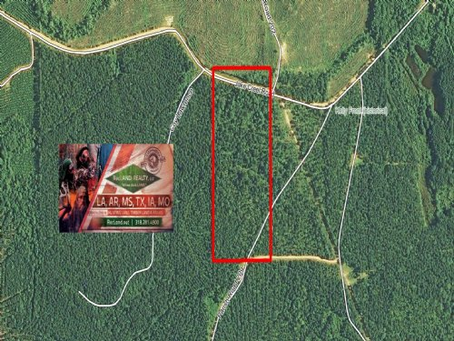 20 Ac - Pine Plantation With Home S : Joyce : Winn Parish : Louisiana