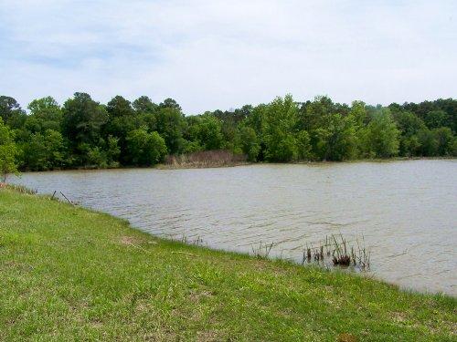 305 Ac Off Fm 3454 : Riverside : Walker County : Texas