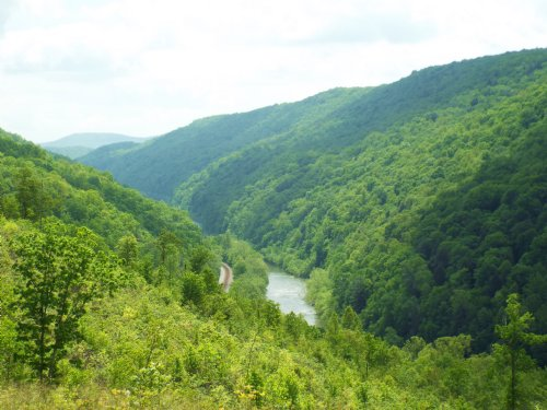 Bluff Lot Overlooking Emory River : Wartburg : Morgan County : Tennessee