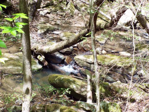 30 Unspoiled Acres On A Creek : Wartburg : Morgan County : Tennessee